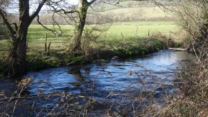 the river Yeo at the bottom of the farm